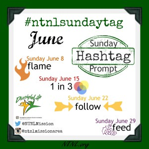 NT-NL's Sunday Hashtag Prompt - June | NTNL.org