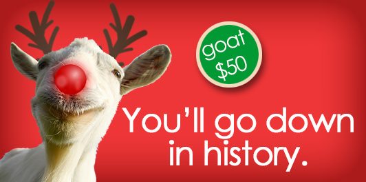 "Close-up image of a goat's face looking at the camera; a round, red nose and brown reindeer antlers have been drawn on the goat. The words ""goat $50"" appear in a green circle; the words ""You'll go down in history"" appear in white over the red background of the image."