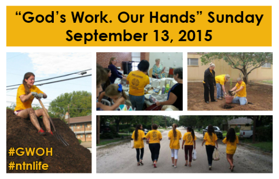 """God's Work. Our Hands."" Sunday - September 13, 2015 [Image description: a yellow banner at the top reads ""God's work. Our Hands"" Sunday / September 13, 2015"" in black text. The image is a collage of photos of NT-NL members from last year's ELCA Day of Service, working on service projects and wearing the bright yellow t-shirts.]"